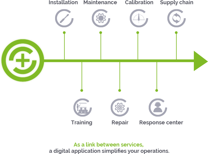 maintalliance-services-schema