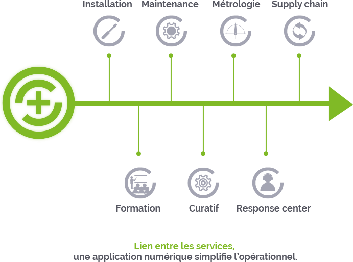 maintalliance-services-schema